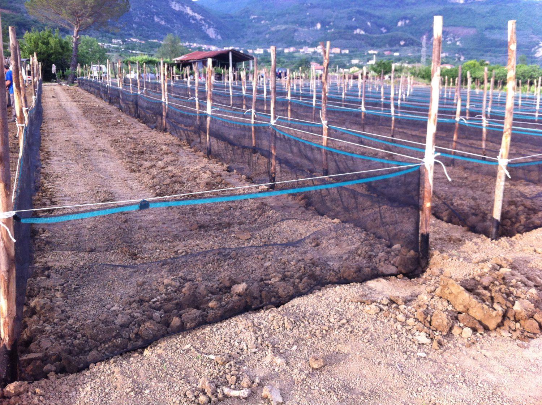 SNAIL FARMING NETS